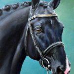 paardenportret